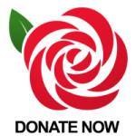 rose-donate-150x150